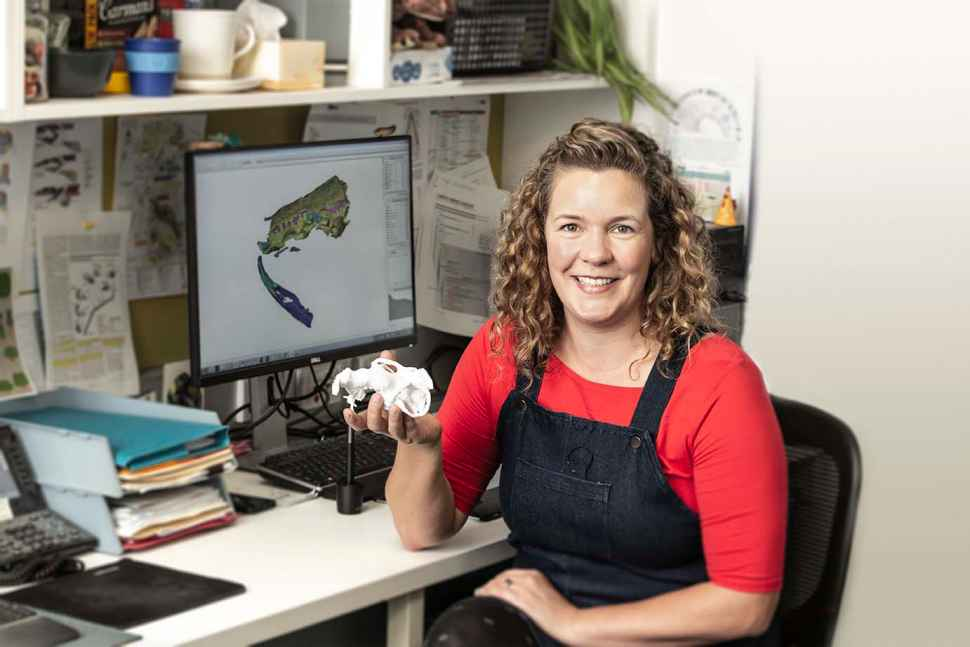 Flinders University Palaeontology Laboratory Postdoctoral Research Associate, Dr Alice Clement