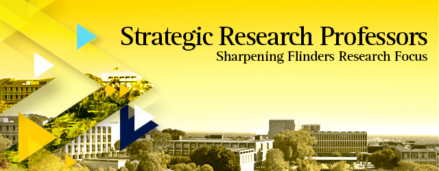 Strategic Research Professors